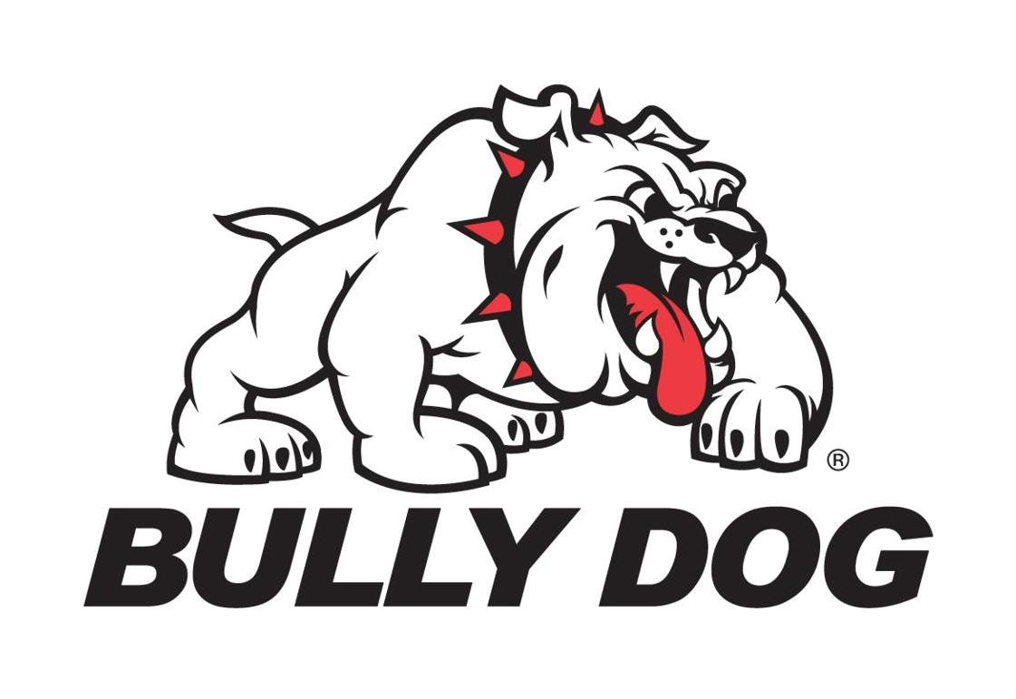 Bully Dog Discounts