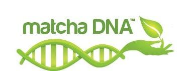 Matcha DNA Discounts