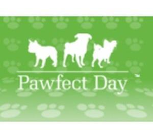Pawfect Day Discounts